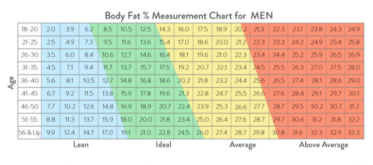 Male Body Percentage Chart