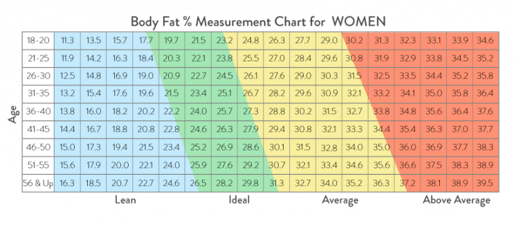 Female Body Fat Percentage Chart